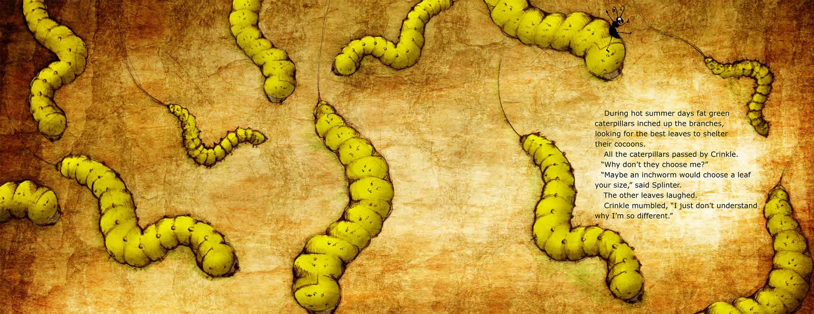 Last Leaf caterpillars