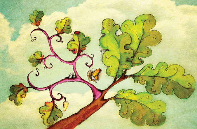 last leaf tree in spring.