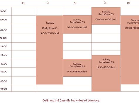 Kineziologie - individuální konzultace