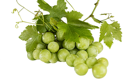 PSD-files-grapes-582207Clippng.png