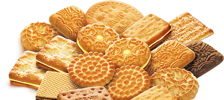 Biscuit (121).png