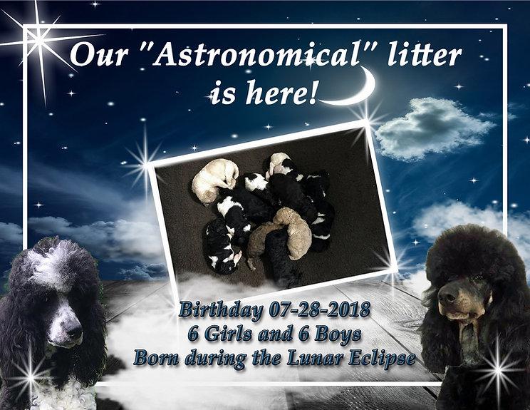 Astronomical Litter.jpg