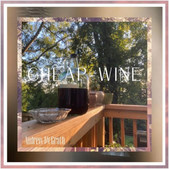 Andrew McGrath - Cheap Wine (single)