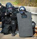 iStock_SWAT_Team_2434162Medium.jpg