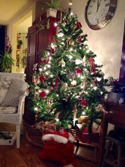 kerstboom 2018