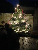 Kerst in ons wintertuintje