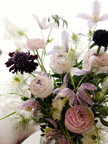 Blooms of the Week | Wild Twelve Floristry