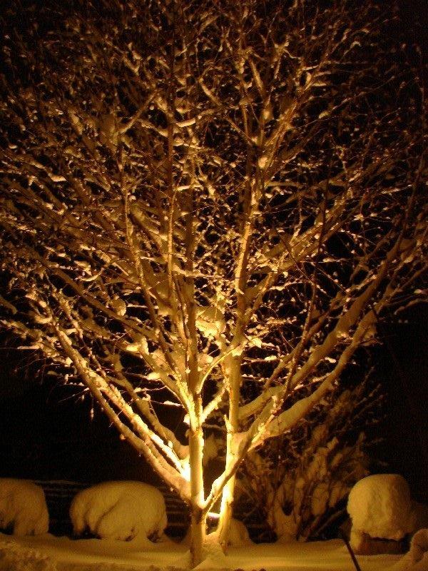 hiver night 2