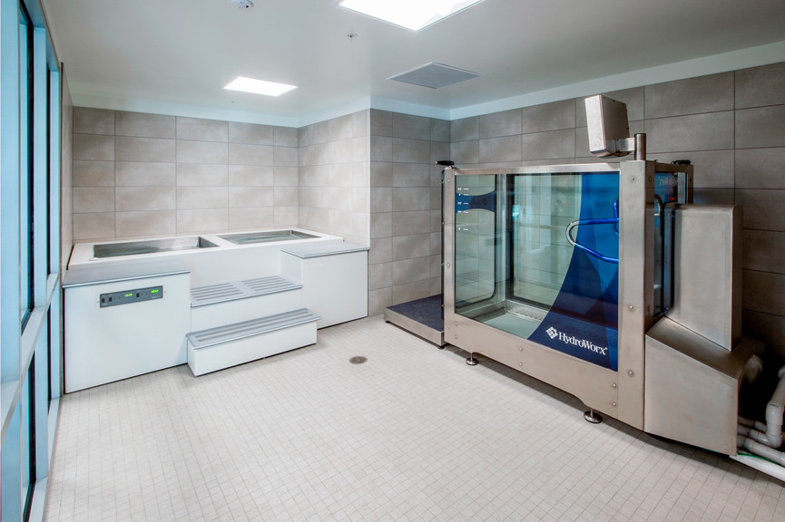 hydrotherapy-roomjpg
