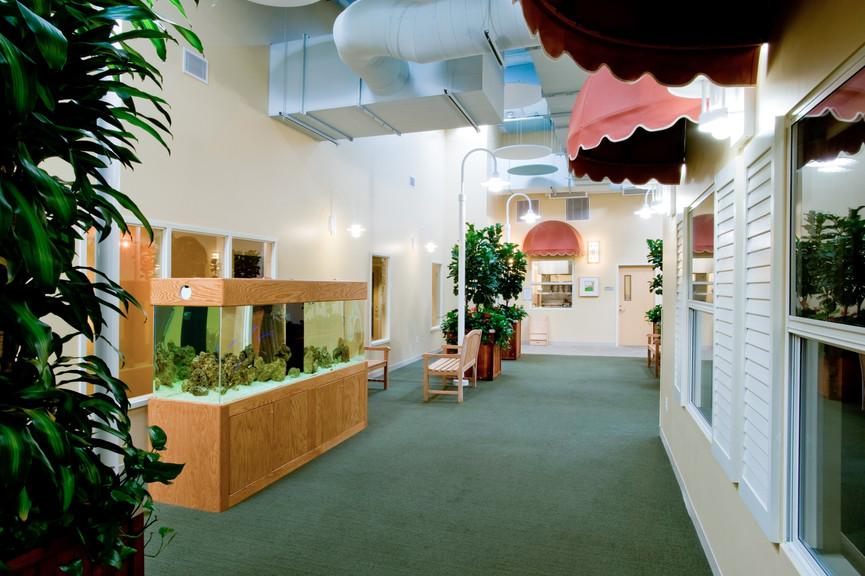 corridor-and-aquariumjpg