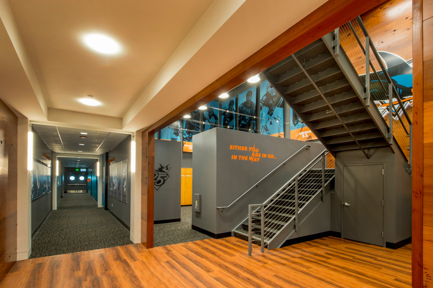 staircase-and-hallwayjpg