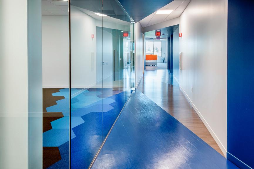 glass-wall-and-corridorjpg