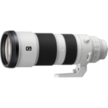 Sony 200-600.jpg
