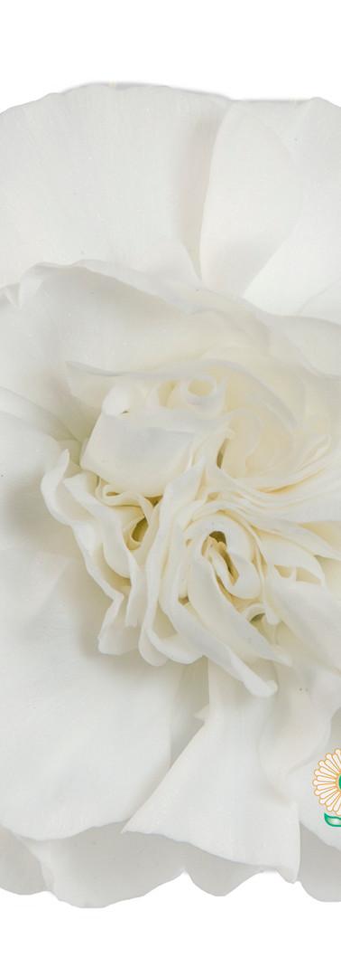 Ada Flower.jpg