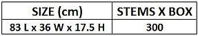 3.2 Half Box (M.T.) Size.JPG