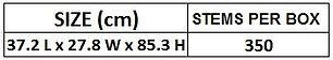 6. Procona Size.JPG