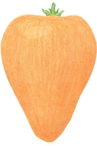 Желтая булочка (Yellow cookie) - 5 шт