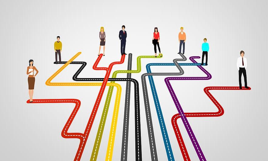 Ideal Career Path