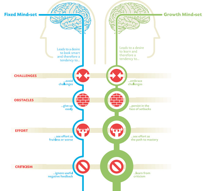 Fixed Mindset vs Growth Mindset Infographic I Adopting a Go-Getter Attitude Will Get You Anywhere