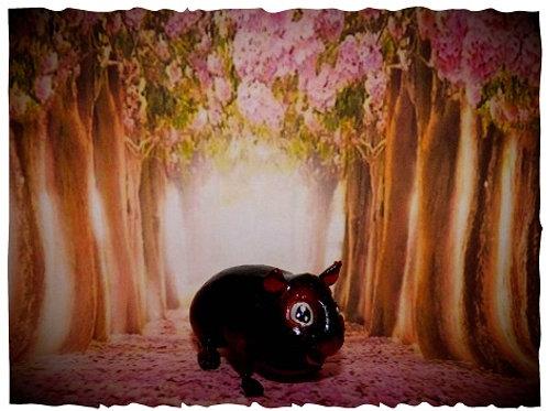 Cochon d'inde cartoon's Tan