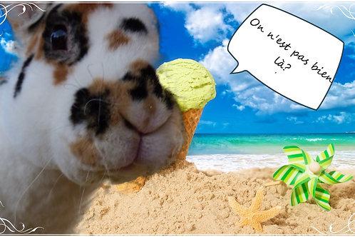 Carte postale vacances avec Pinpin