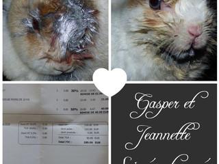 Soin pour Jeannette et Gasper