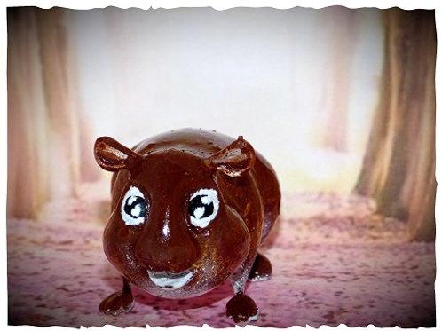 cochon d'inde cartoon's doré agouti