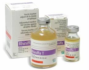 Vaccin Rhiniffa T
