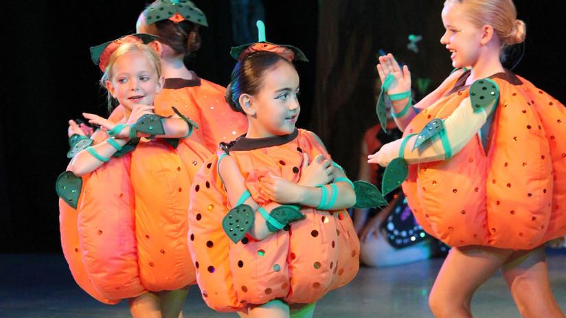 FDP Cinderella 2017 Pumpkins & Vines 118