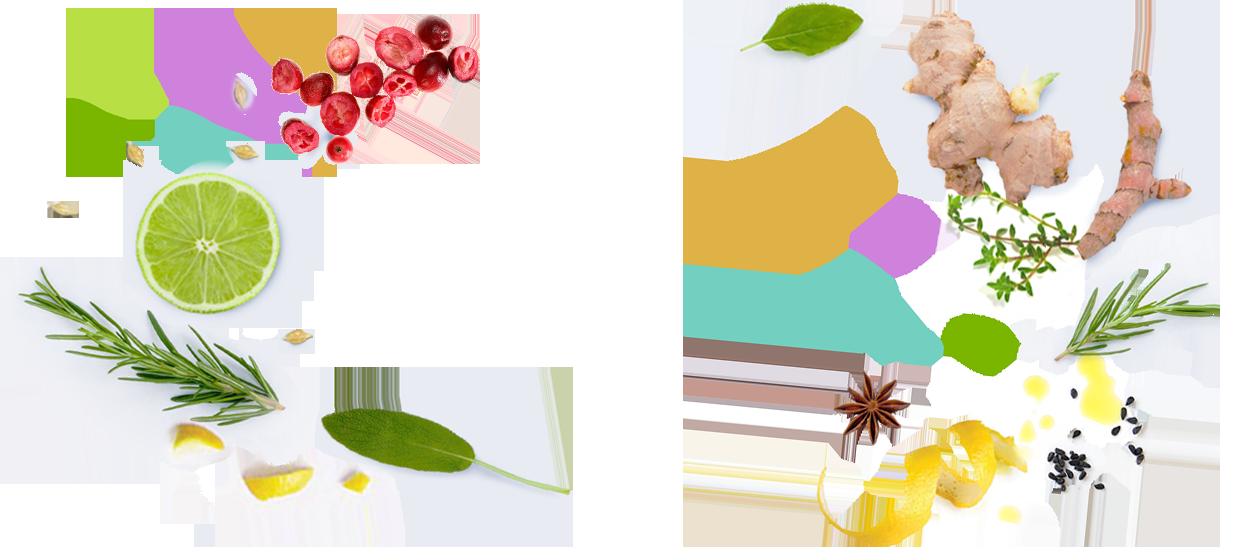 Salon de coiffure végétal, naturel, bio, 45000 orléans