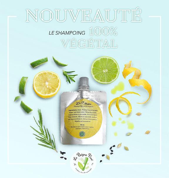 Soin cheveux naturel unique, citron, végétal, orléans
