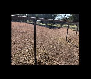 metal farm fence.png