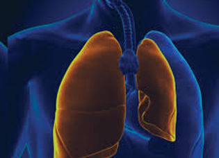 SIIM-ACR Pneumothorax Segmentation.jpg