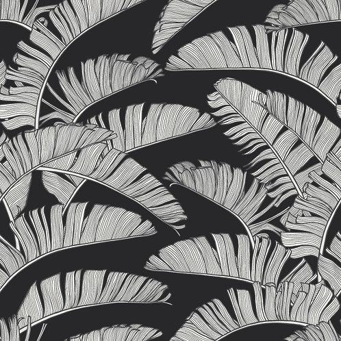 SUMMER | Palm Mono