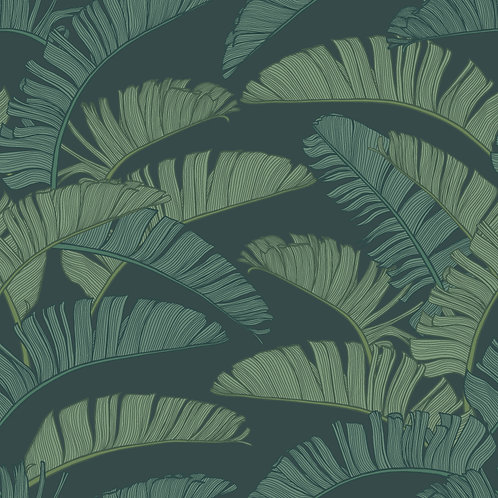 SUMMER | Palm Botanical