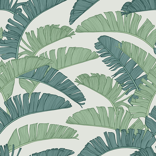 SUMMER | Palm Tropical