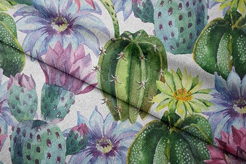 CACTI COOL | Cacti 2
