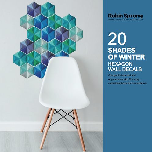 20 Shades of Winter Hexagon Wall Decals