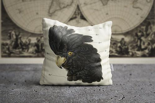 THE ACADEMIA | Black Cuckatoo