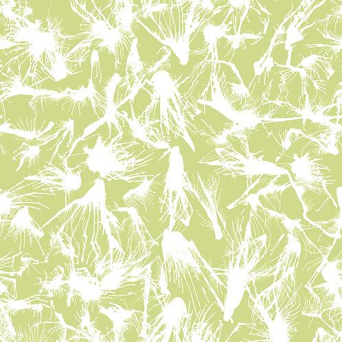 SPLATTER | White on Gold