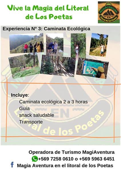 Ruta 3 Caminata ecologica.jpeg