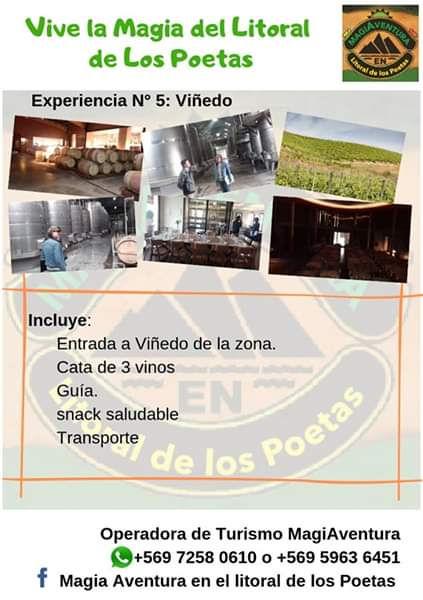 Ruta_5_Viñedos.jpeg