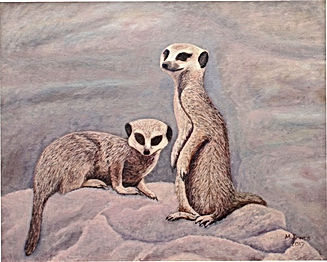 A painting of two Meerkats basking on a rock.
