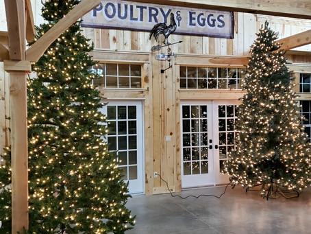 Christmas comes to the barn