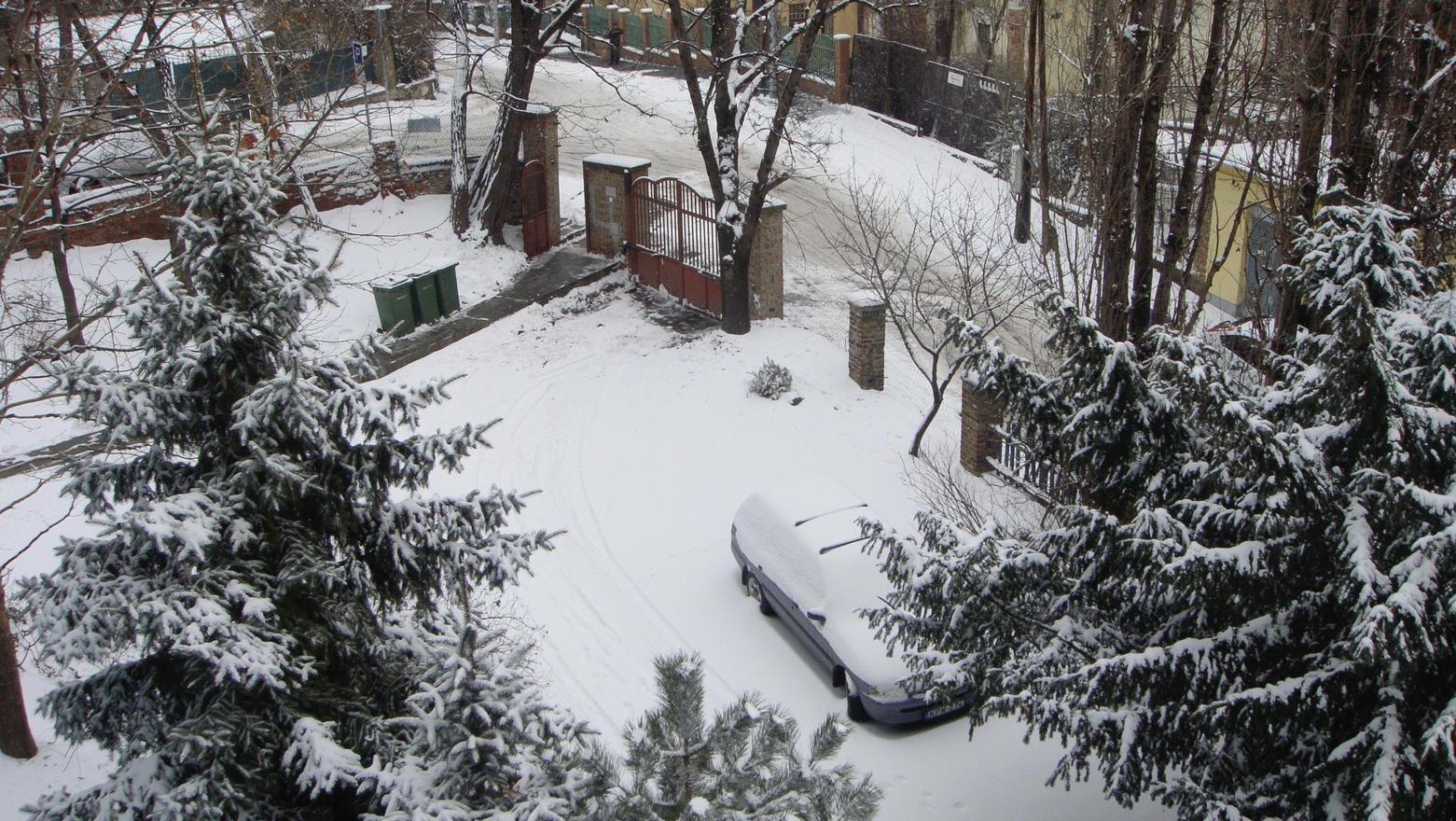 A kelenhegyi kert hóban, 2010