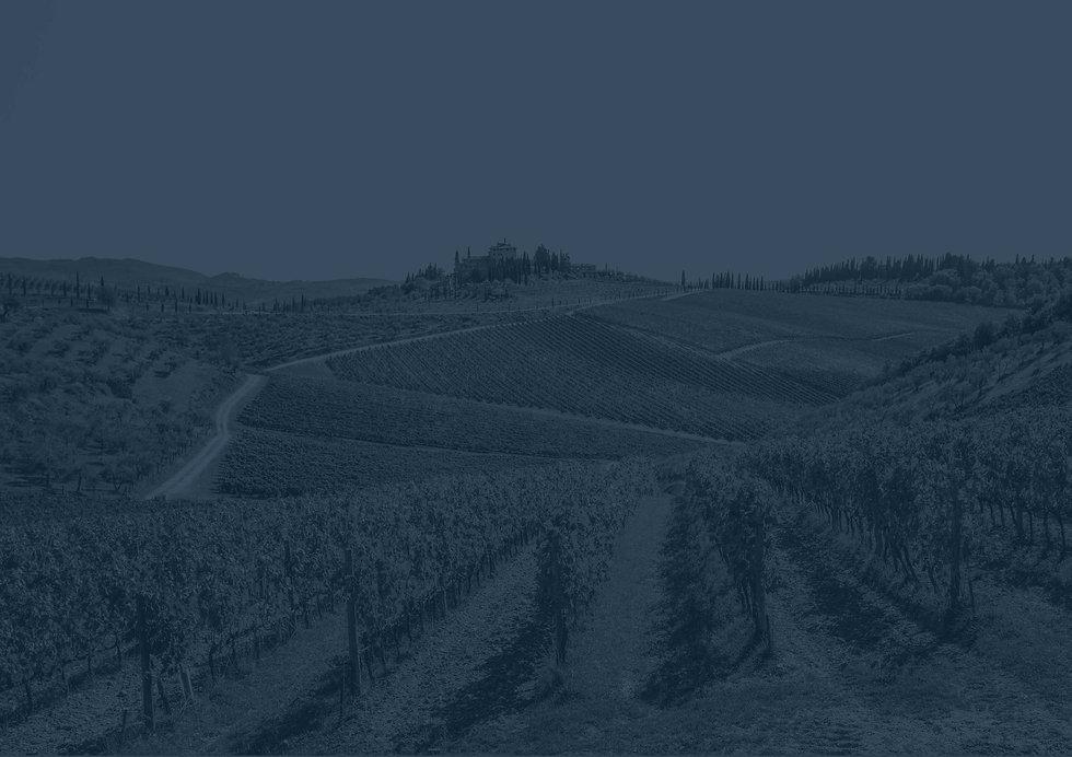 winery_02_cropC.jpg