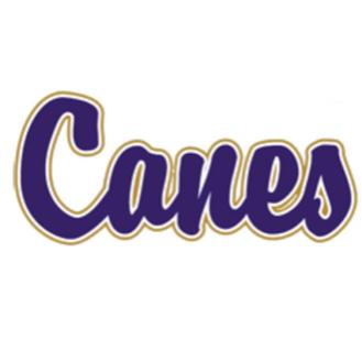 Cartersville volleyball advances