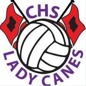 Cartersville High hosting youth volleyball camp