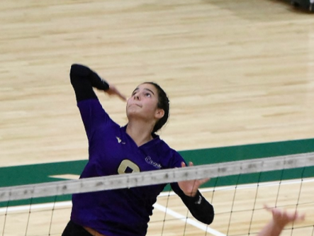Cartersville volleyball captures county title