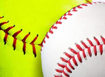 Bartow County LL 10U softball advances; Cartersville LL 10U baseball falls